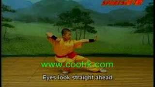 Shaolin Cannon Boxing Kung Fu Demostration KF609 coohk