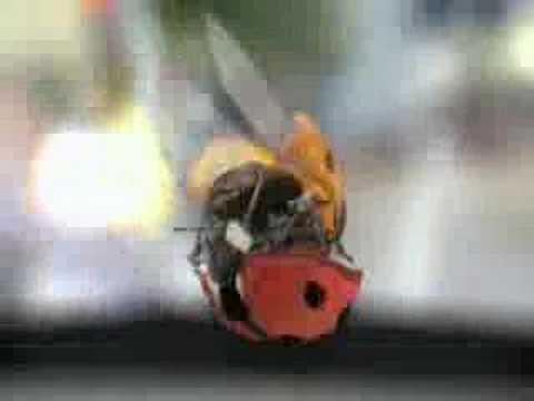 Lieveheersbeestjes (Peugeot)