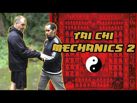 Tai Chi mechanics 2 Mark Rasmus 5th July 2017