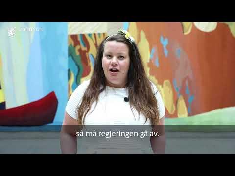 Ord pГ Stortinget ВmistillitВ