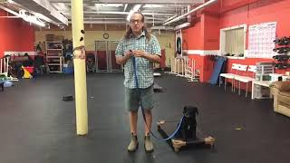 Dog Training   Starting dogs on remote collars   Solid K9 Training Dog Training