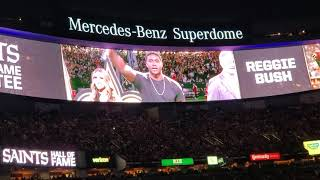 Reggie Bush Saints HOF Induction