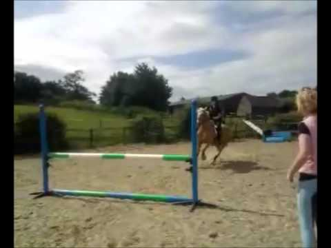 My Life Horse Riding : )