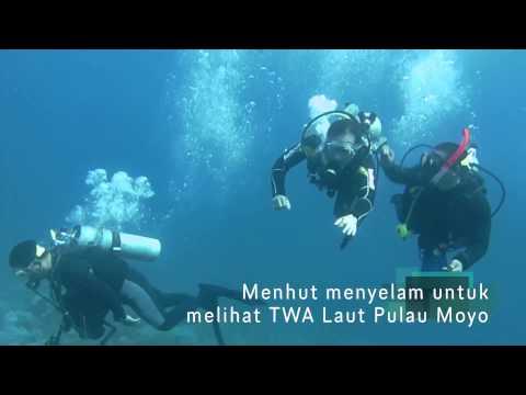 TWA Laut Pulau Moyo Sumbawa