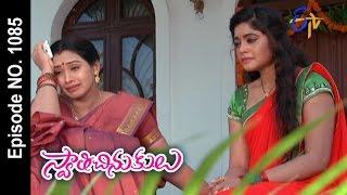 Swathi Chinukulu |24th February 2017 | Full Episode No 1085| ETV Telugu
