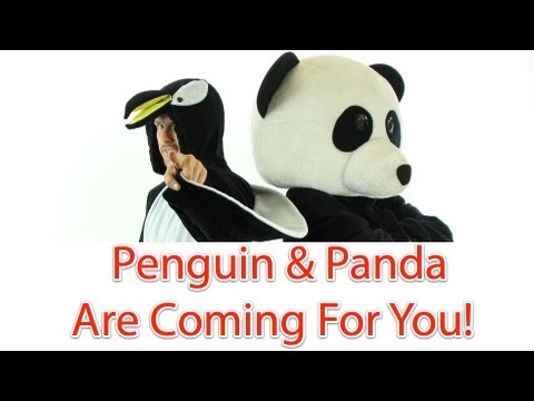 How To Recover From Google Panda And Penguin Updates