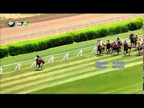 Vidéo de la course PMU PREMIO JOHN DANCER