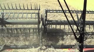 Harvest 2015. Case IH 9230.