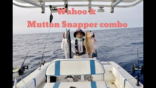 Fishing in the Florida Keys with Captain Wicho - Wahoo and Mutton Snapper combo