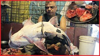 3 Big Dwarf Goonch Catfish Cut Into Piece In Fish Market by Most Popular Fishmonger Bangladesh
