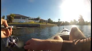 download lagu Bream Fishing, Paradise Point, Gold Coast gratis