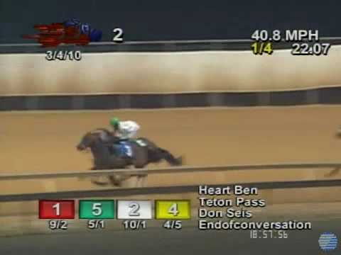 Horse loses jockey and WIns!