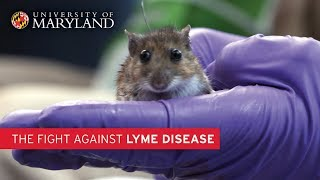 The Fight Against Lyme Disease | UMD