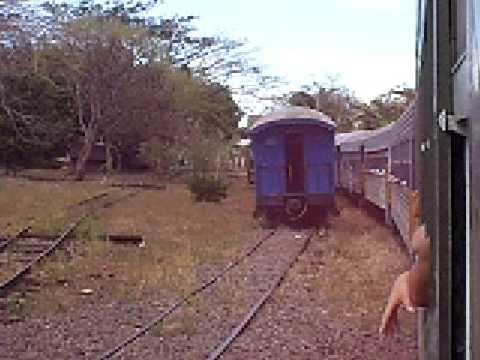 Cruce de trenes en Ceiba