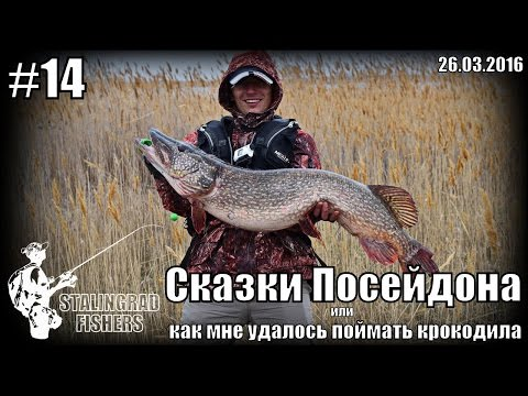 Сказки Посейдона или как мне удалось поймать крокодила - 26.03.2016