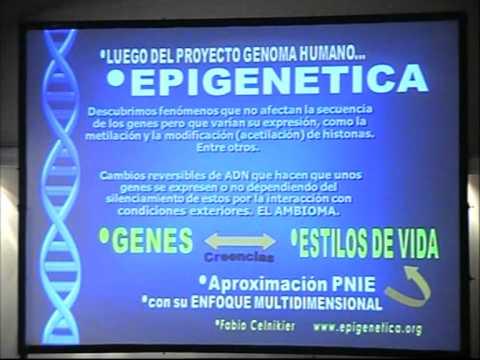 Epigenética en Ginecología y Obstetricia