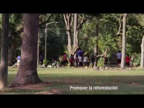 siembra-arboles-patronato-ciudad-del-nino