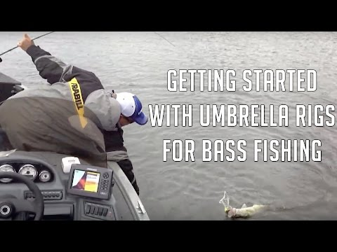 The Alabama Rig - How to Get Started Fishing with It