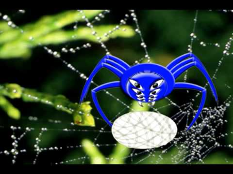 How Spiders Mate (2D Animation)