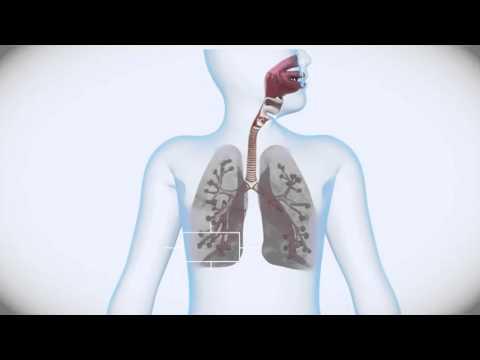 0 - Що робити якщо у дитини довго не проходить кашель і чому це буває