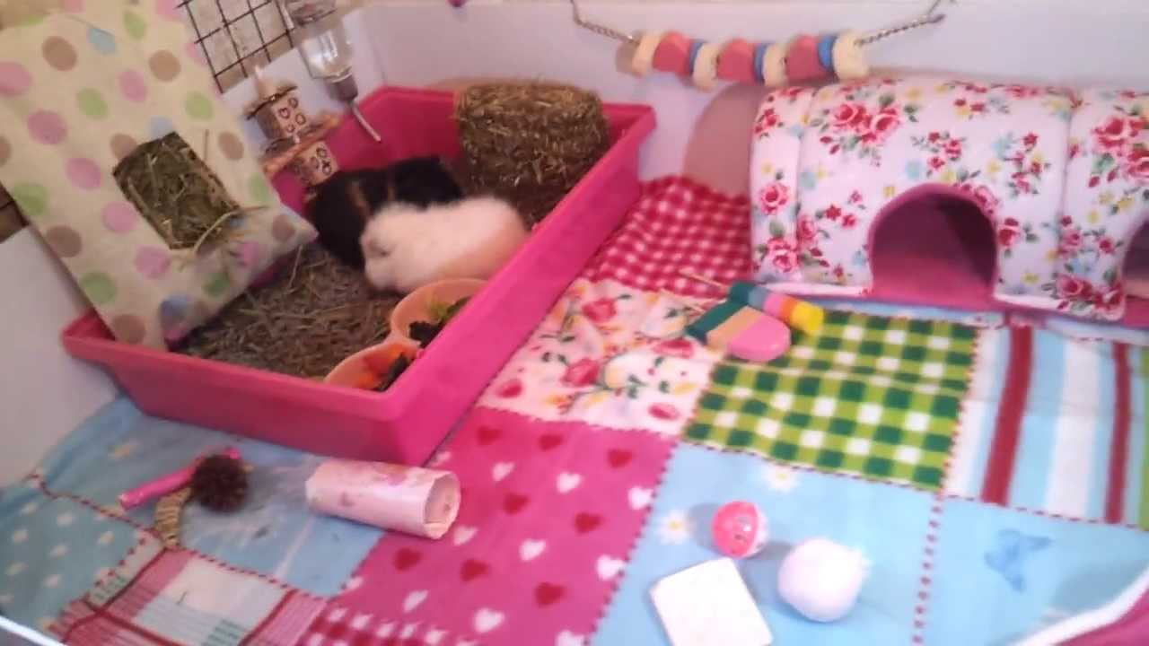 Guinea pig c c tour shabby chic theme youtube for Where to get c c cages
