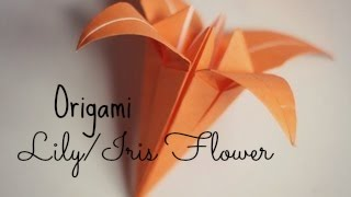 Origami Iris Flower Instructions