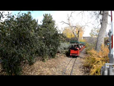 Train at the Denver Zoo Free Day