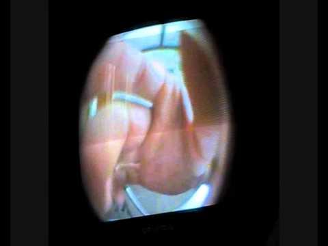 Test judasza wyposażonego w kamerę i obiektyw własnej konstrukcji
