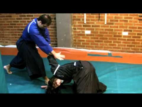 Ogawa Ryu Aikijujutsu November Training Image 1
