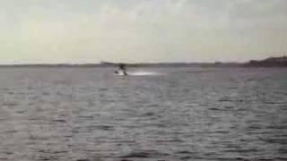 1948 Luscombe 8a floatplane takeoff