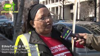 Ethiopia: #OromoProtests Solidarity Rally DC - Interview with rally organizer Dinkinesh Eressa