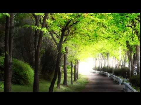 劉德華-回家的路