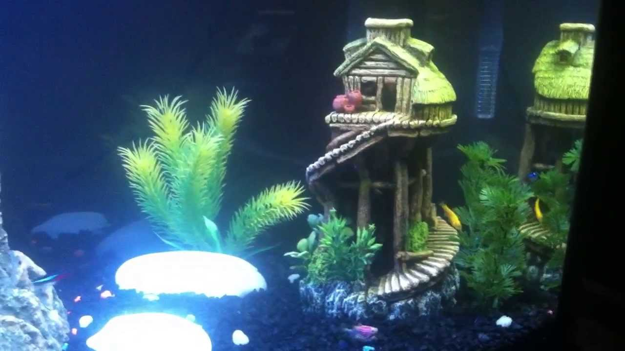 How to decorate a fish tank youtube for How to decorate fish tank