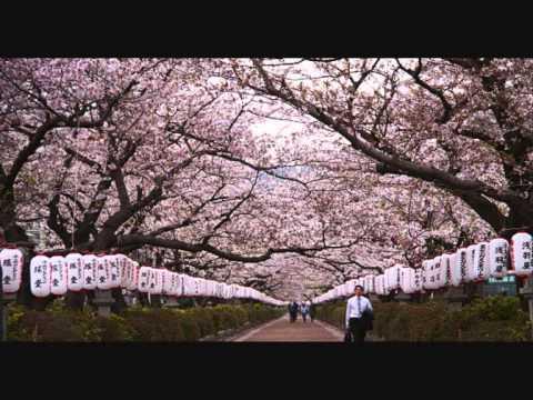 หนังโป๊ ญี่ปุ่น
