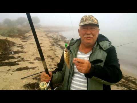 все о рыбалке на донузлаве