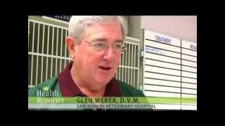 Senior Pet Care - Dr. Glen Weber | The Health Reporter