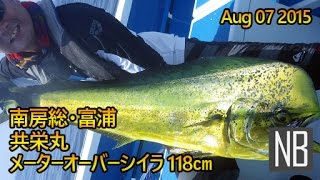 メーターオーバー シイラ 南房総・富浦 共栄丸[118cm Dolphin Fish fishing on the Kyouei-Maru in Tomiura] Aug 07 2015