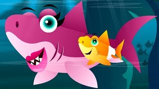 Baby Shark Song | Music For Kids | Cartoons Videos by Kids Baby Club