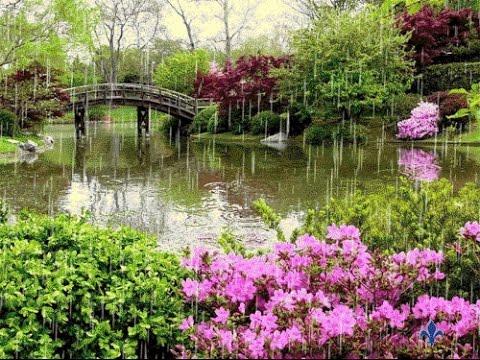 الطبيعة اروع الاماكن في الارض * Landscape Beauties finest in the world