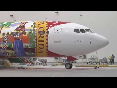 Southwest Airlines The Making of Florida One