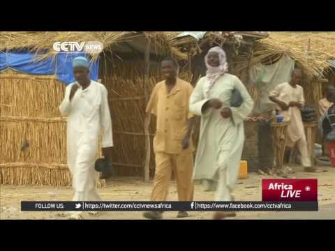Conflicting priorities among states stall victory against Boko Haram efforts