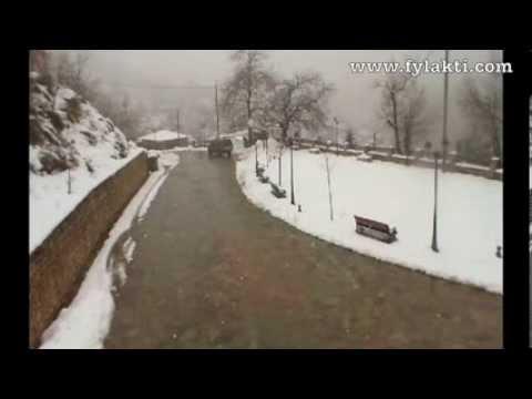 Χιονόπτωση Φυλακτή Καρδίτσας Live Camera 6/2/14 - fylakti.com