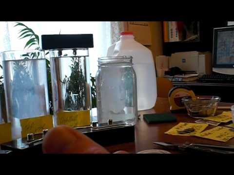 How to Make Colloidal Silver Generator 99.99% vs 99.9% Pure Silver