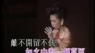 林憶蓮Sandy Lam [燒]  - 1991意亂情迷演唱會