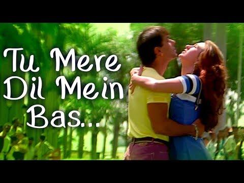 Tu Mere Dil Mein Bas Ja - Salman Khan - Karishma Kapoor - Judwaa...