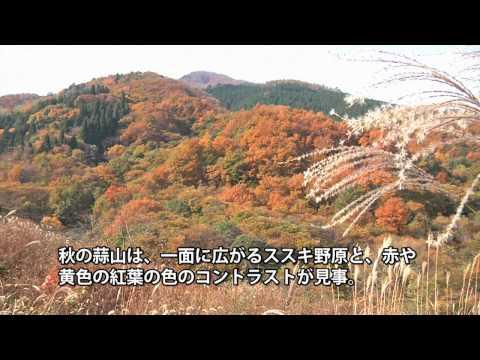 おかやまの紅葉 「蒜山高原」