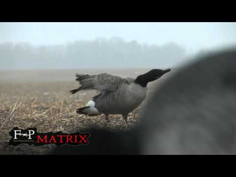 Field Proven Calls Matrix Goose Call