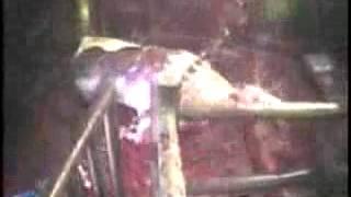 PETA Agriprocessors 2004