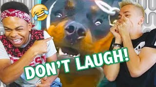 TRY NOT TO LAUGH IMPOSSIBLE CHALLENGE ft. Miniminter