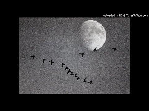 Советские песни - Летят Перелетные Птицы 1948
